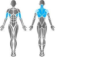 ćwiczenia czworogłowych mięśni grzbietu.